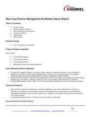 02-07012010 Blue Coat Bi Weekly Status Report.docx